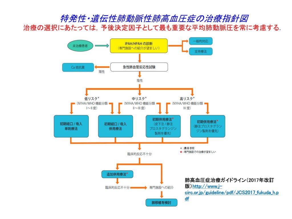 特発性・遺伝性肺動脈性肺高血圧症の治療指針図