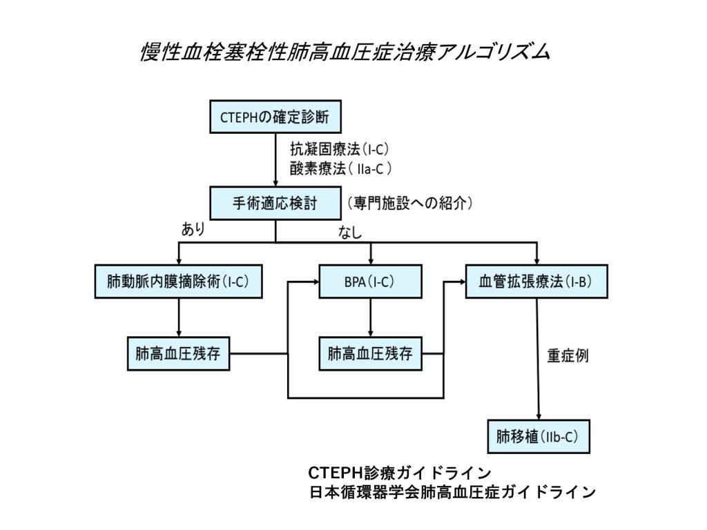 慢性血栓塞栓性肺高血圧症治療アルゴリズム